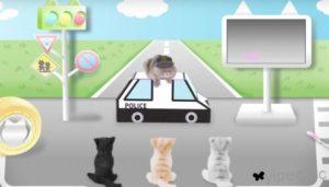 猫咪也要注意交通安全,给「猫主子」看的交通安全宣导影片!