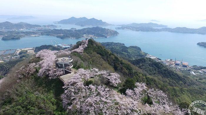 春飨日本爱媛樱花迷推必访梦幻美景TOP3