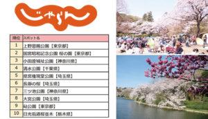 与众不同的赏樱排行榜!东京人口耳相传的「关东地区一日来回赏樱名所TOP 10」