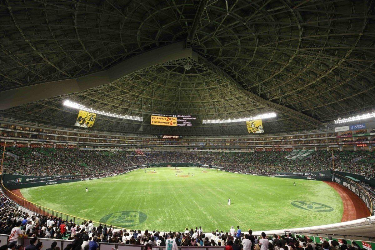飞去日本看棒球!软银鹰首设「海外球迷应援席」!还可上场玩棒球九宫格