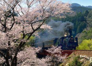静冈县岛田市大井川铁道