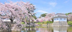 日本小田急集团举办沿线樱花宣传活动 晒照片有机会抽奖