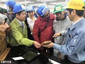 静冈新茶价格创新高 1公斤8万多人民币