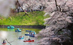4月里的入社式,就这样成了日本社会的一道春日风物诗