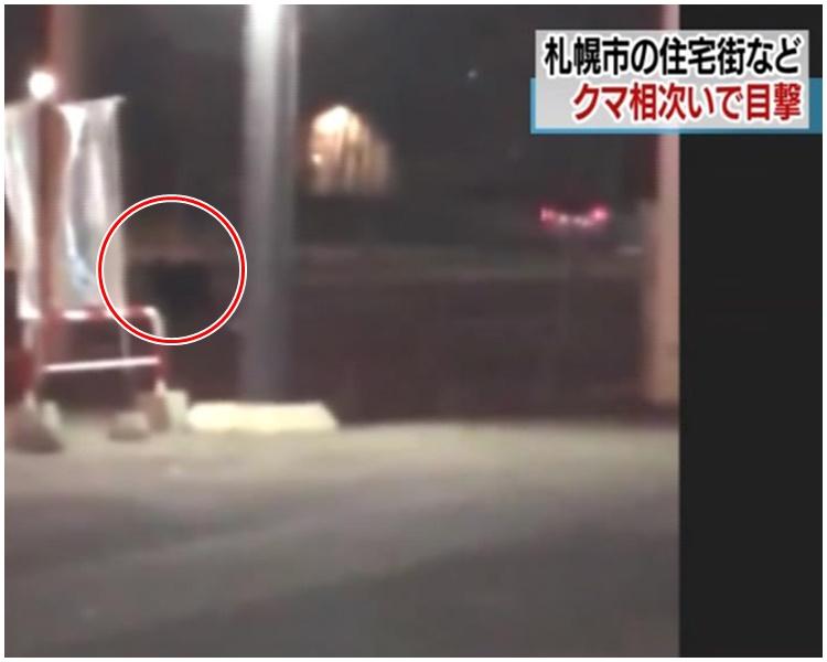 北海道札幌市区熊出没日警戒备吁民众留意