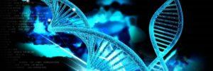 美日创建迄今最大DNA基因模型