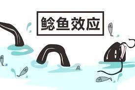 乐天经验引发纯网银鲶鱼效应