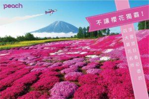 不输樱花!乐桃整理出日本四大赏花名所