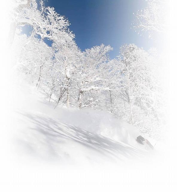 札幌国際スキー場 札幌国際スキー場HPから引用