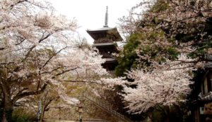 【岛根】安来市:清水寺