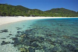 冲绳海滩玩什么:赏鲸、透明独木舟!冲绳海水浴场10选