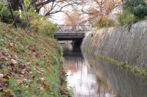 行者桥(白川一本桥)