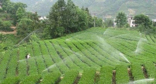 日本开始发展无人化农业