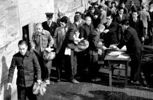 日本政府拟配合10月天皇即位仪式实施恩赦
