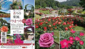 山形:2019玫瑰祭
