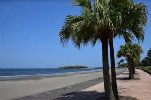 宫崎县「青岛海滩」体验海上运动的好去处