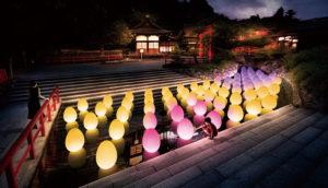 进入teamLab的迷幻夜世界!京都下鸭神社糺之森之光祭典2019盛夏再现