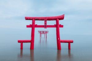 将充满了梦幻气氛的海中鸟居「大鱼神社」收入镜头:太良