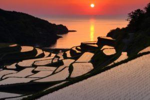 伴随夕阳欣赏绝美梯田景色:唐津