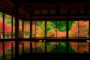 在「环境艺术之森」欣赏红叶美景:唐津