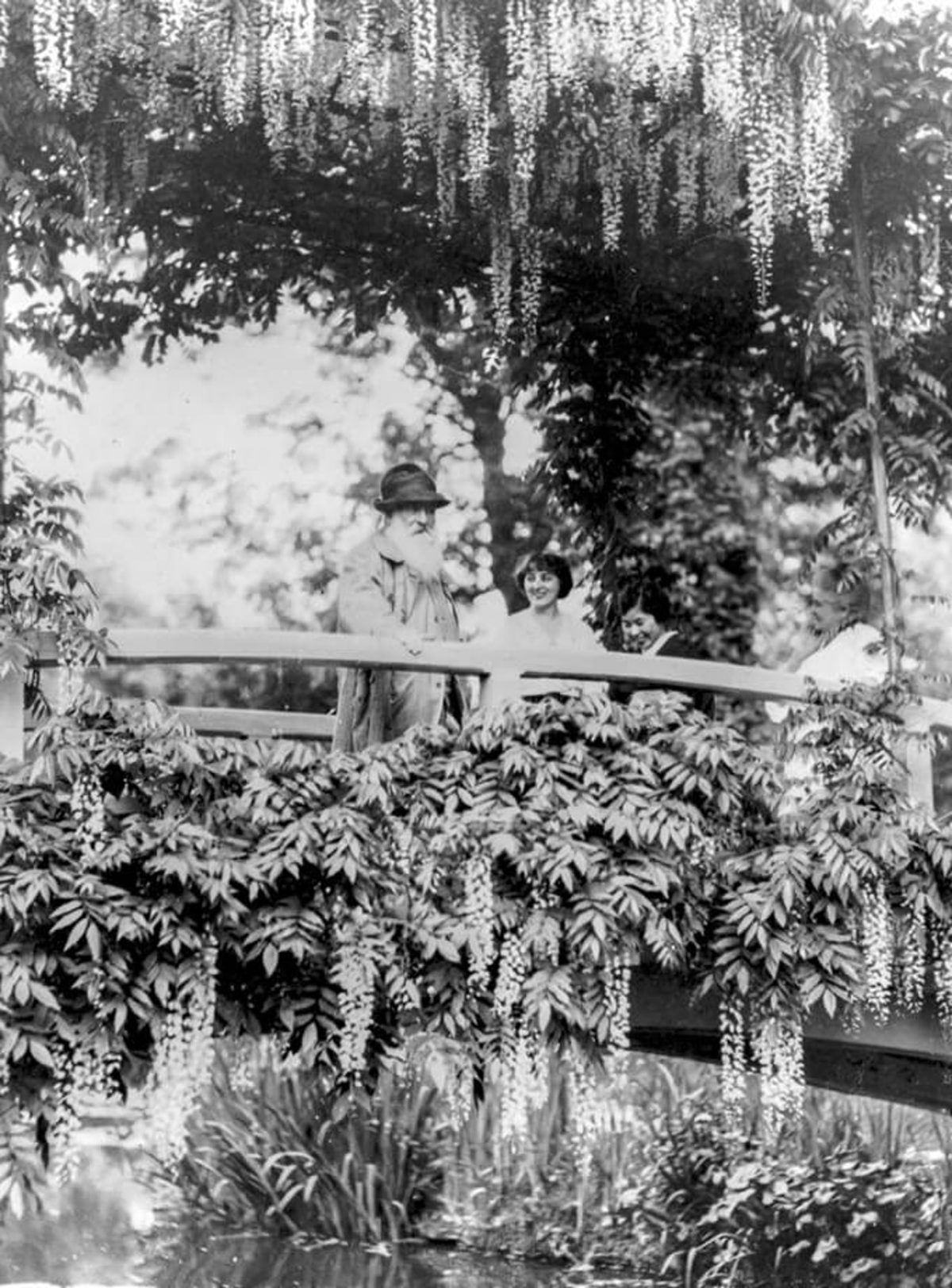 【艺术】日本北川村莫奈花园神还原印象派名画《睡莲》河畔美景