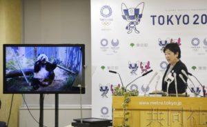 """详讯:上野动物园大熊猫""""香香""""明年将送回中国"""