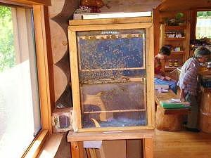 みつばち観察やはみちつ採集体験もできるみつばち博物館・アズマ養蜂場【連載:アキラの着目】