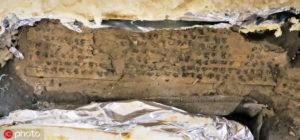 阿富汗遗址发现佛经抄本 或为玄奘游记中佛国