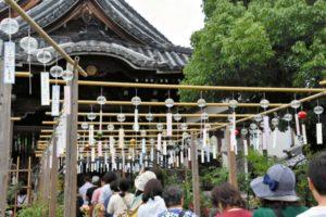 日本奈良的阿房观音寺举行风铃节 炎炎夏日送清凉