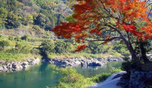 2019日本赏枫  【熊本】球磨川、一胜寺