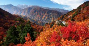 2019日本赏枫  【石川县】白峰县道白山公园线沿线