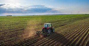 快讯:日本2018年度粮食自给率37% 跌至低位