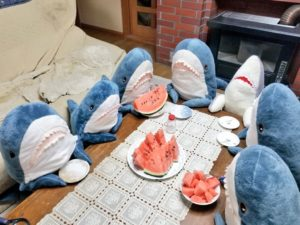 被温馨饲养的「IKEA鲨鱼」?日男一口气养了5尾笑翻网友