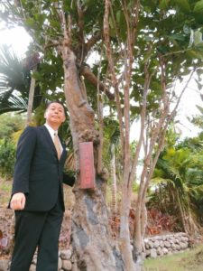 台东寻根日董座找百年咖啡树