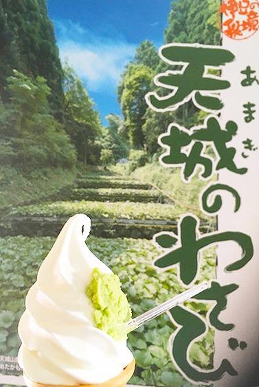 優しい爽やかな辛味と冷たい甘さがマッチ!わさびソフトクリーム(静岡県伊豆市)【連載:アキラの着目】