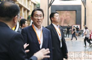 自民党政调会长称将举全党之力推动修宪