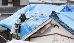 千叶县至少3人在修理台风损坏房屋时跌落死亡