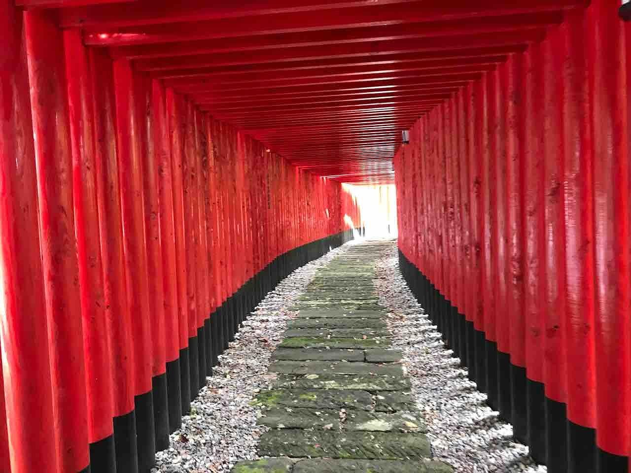 連なる鳥居とスケルトンの鳥居は必見、神徳稲荷神社(鹿児島県鹿屋市)【連載:アキラの着目】