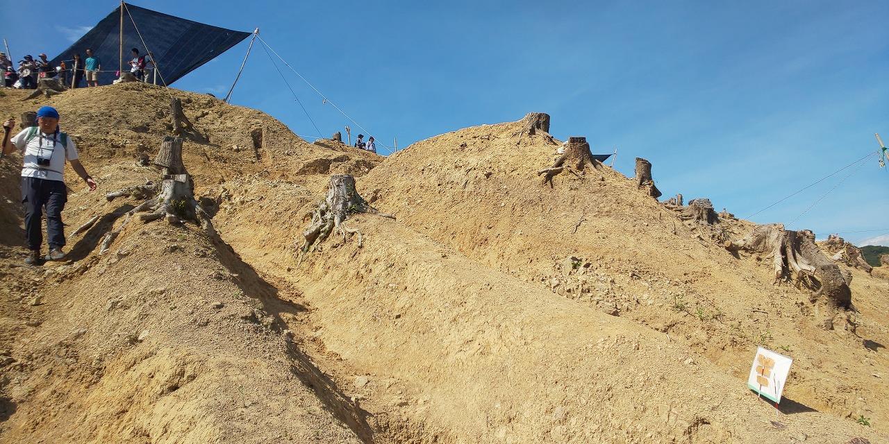 畝状竪堀群が際立つ戦国期の山城・南山城、最後の現地説明会に城好き300人殺到!【連載:アキラの着目】