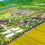 """餐饮巨头""""和民""""将在东日本大地震灾区建主题农园"""