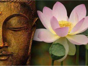 为什么要报国恩?佛教的爱国情怀