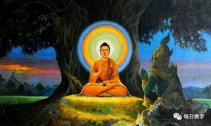 佛陀的最后遗嘱