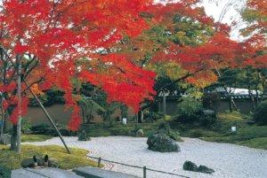 搭小船赏两岸枫红+听渔夫唱歌!日本东北6处赏枫圣地
