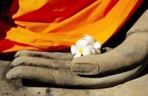 你,在佛菩萨眼中的样子