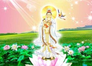 佛教:万事皆有因果,这三种行为要谨慎!