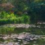 京都比睿山花园美术馆