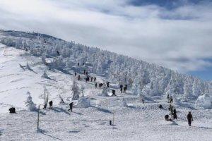 日本政府拟支援完善滑雪度假区以吸引访日游客