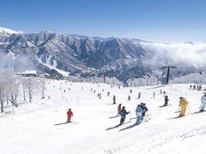 2018年到访日本新潟县的外国游客达40万人 滑雪场集中的鱼沼占半