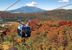 神奈川箱根成在日外国人最想去的红叶景点 距离近交通方便成关键