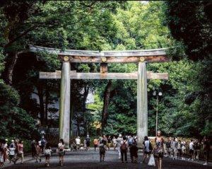 成为日本人的必经之路!哈日族游东京「跨年」3部曲